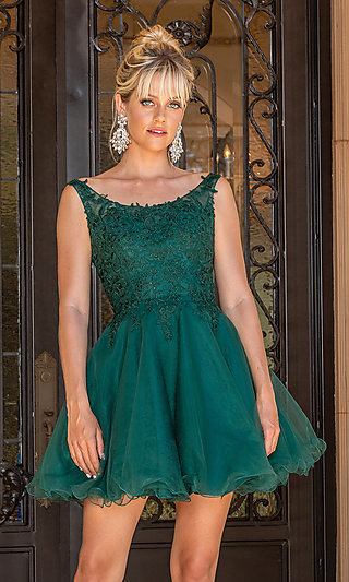 Embroidered Scoop-Neck Short A-Line Homecoming Dress